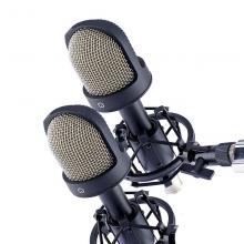 Микрофон конденсаторный стереопара Октава МК-101-Ч-С