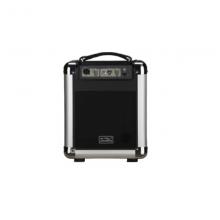 Акустическая система с аккумулятором Soundking PA6B